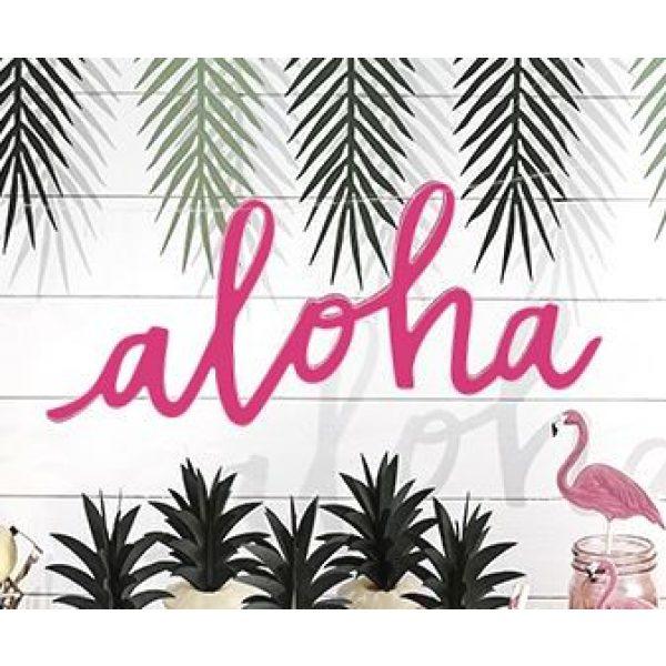 Aloha Schrift Banner-0