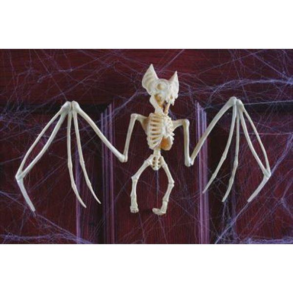 Fledermaus Lebensgroßes Skelett 28 cm-0