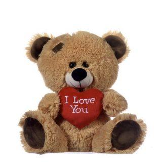 Plüschtier Teddybär mit I Love You Herz 27 cm-0