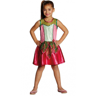 Blattfee Fairy Kostüm Gr 116-0